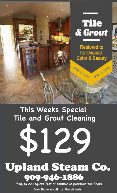 Upland Steam Carpet Company Carpet Tile Furniture Cleaning