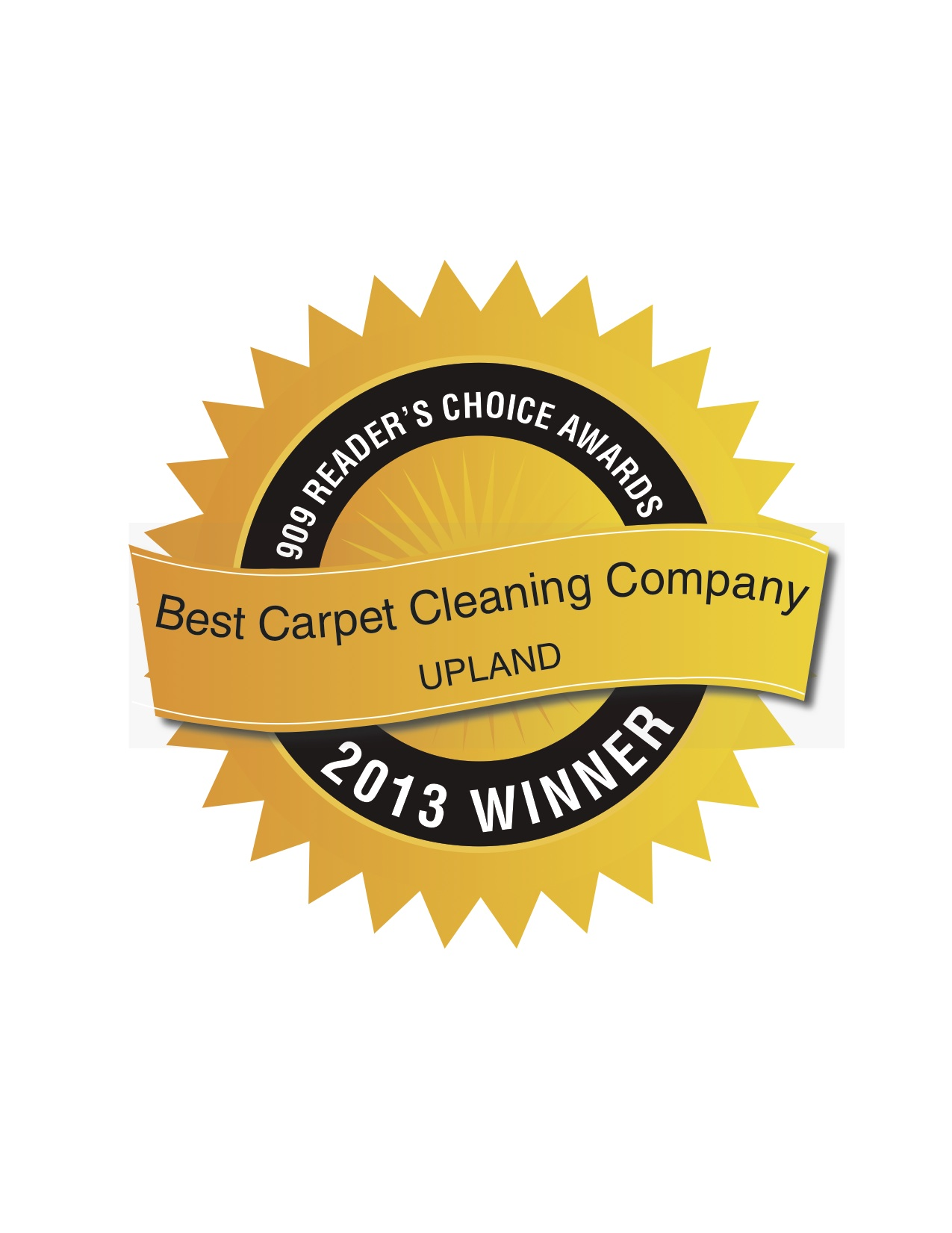 Best Carpet Cleaning Company_U